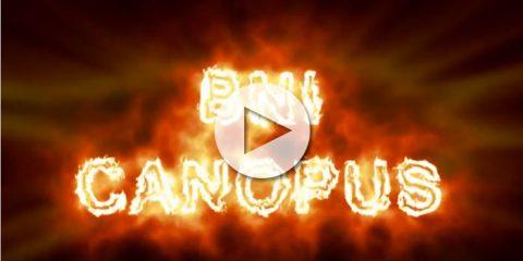 bni_canopus_1jahr